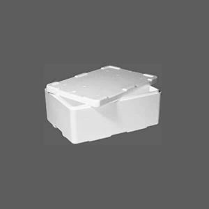 EPS polystyrene boxes and containers Oyster Box