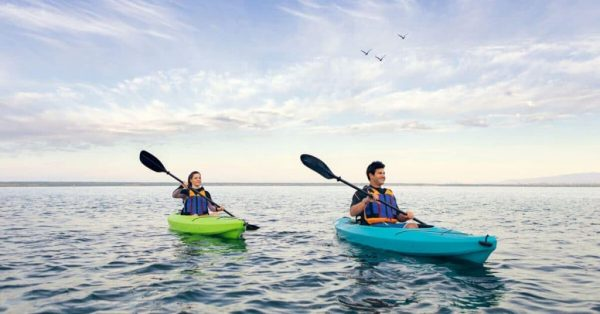 IFP Group Sell Lifetime Kayaks and Paddleboards NZ Wide