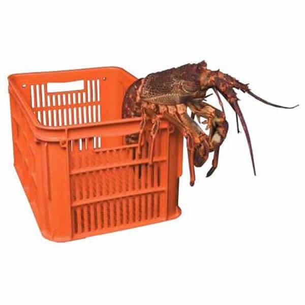 Orange Vented Food Crate 2