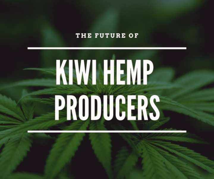 Kiwi Hemp Producers 1