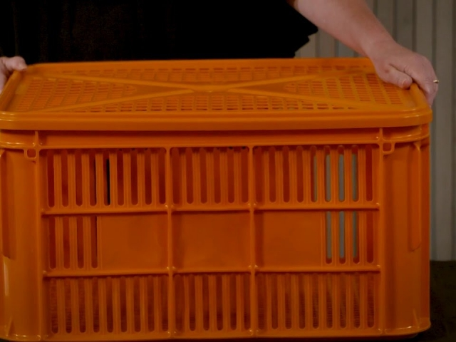 Vented Crate Supplier