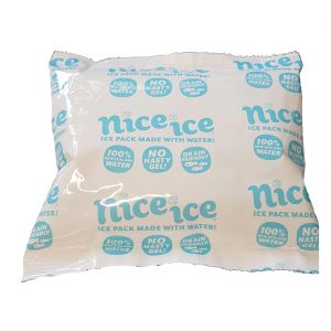 water ice pack 500g